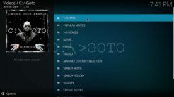 GOTO Kodi Addon Movie Scrapers Section