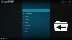 FDJ.HD Kodi Addon Alive HD Section