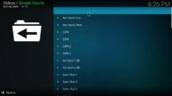 Simple Sports Kodi Addon World Channels Section